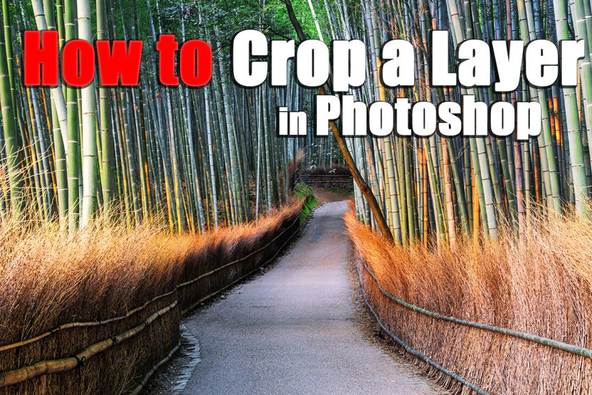 How to Crop a Layer in Photoshop