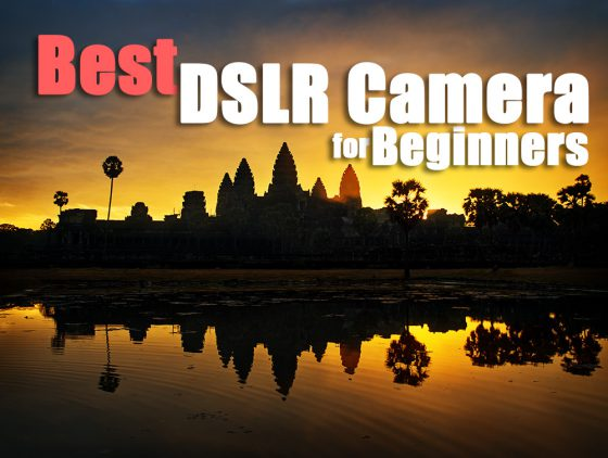 The Best DSLR Camera for Beginners in 2020