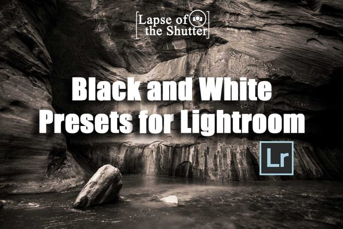 Free Black and White Lightroom Presets