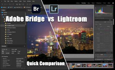 Adobe Bridge vs Lightroom: Which Should You Use?