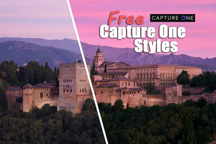 Free Capture One Styles